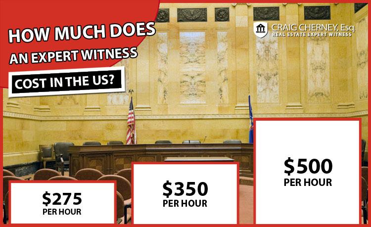 Expert Witness Cost
